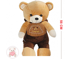 2 in 1 Teddy Bear