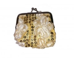 Golden Stylish Zero Purse
